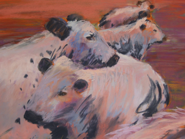 """Laid Back Cows"" pastel on paper 18 x 21 inches"