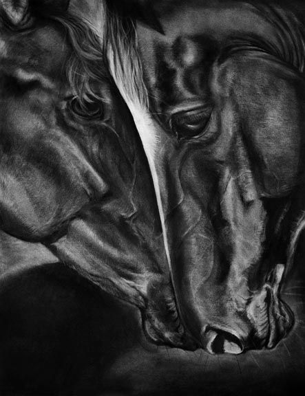 """""""Eclipse"""" charcoal on paper, 18 x 24 inches, 2008, SOLD"""